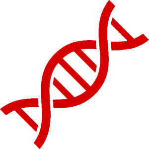 graphic of gene synthesis
