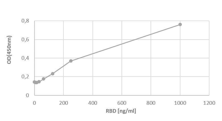 RBD (tag-free) binds ACE2 detected by monoclonal antibody CR3022 (conformational antibody).